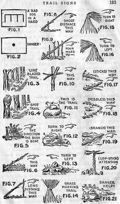 Trail-Marker Trees | Trailism