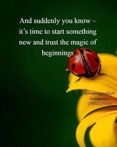 #newbegginings #magicofnew #SpiritualEnergyReading® #Kismatkarma® #call07832029329 #startfresh #www.kismatkarma.com #livechat #londonpsychic #Celebritypshychic #internationallyacclaimed #asseenontv #DrArtiJangra Psychic Readings, Suddenly, Karma, Knowing You, Spirituality, Spiritual