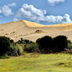 Te Paki is basically a long by wide coastal strip of high sand dunes. - Really crazy that you can find in NZ sand dunes Top Destinations, Natural Wonders, All Over The World, Dune, New Zealand, Coastal, Vacation, Mountains, Eat