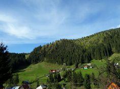 Montana, Euro, Traditional, Nature, Travel, Varicose Veins, Cabin, Flathead Lake Montana, Naturaleza