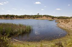 Lagoa Velha