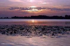 sunset on the lake of Mantova