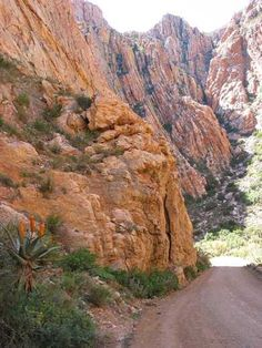 Swartberg Pass, switchbacks and breathtaking views at every turn Provinces Of South Africa, Beer Quotes, Forest View, Game Environment, Cool Art Drawings, Beach Crafts, Travel Info, Natural Wonders, Far Away