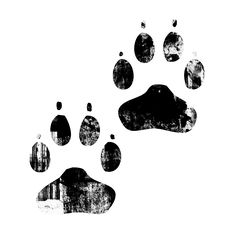 paw print » Legacy Icon Tags » Page 4 » Icons Etc