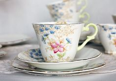 Beautiful early English bone china tea cup, saucer and plate: Wellington china tea set with lovely pale green handle and handpainted flowers