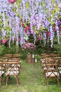 Outdoor Wedding Ceremonies Hanging Wisteria Canopy Wedding Ceremony by Rachel A. Clingen photo by Wedding Ceremony Ideas, Outdoor Wedding Decorations, Wedding Tips, Wedding Events, Wedding Reception, Wedding Church, Wedding Ceremonies, Outdoor Weddings, Decor Wedding