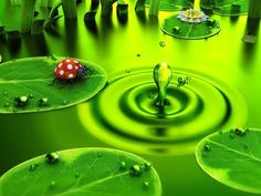 Digital Art Wallpaper + 15 Green Water And Leaf Digital Art HD Wallpaper Image Original Size 3d Nature Wallpaper, Name Wallpaper, Green Wallpaper, Computer Wallpaper, Wallpaper Lounge, Retina Wallpaper, Windows Wallpaper, Flower Wallpaper, Green Pond