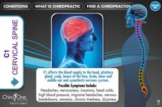 Chiro One launches SpineEffects, an interactive app
