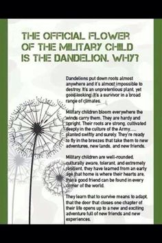 The dandelion is the represents military brats - a subsection of the TCK population.  It symbolizes their resilience and ability to take root wherever they move - something that fits the other TCKs as well. [HLT]