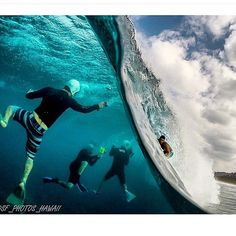 SnapWidget | Window into an underwater WONDERLAND Pic: @sf_photos_hawaii #stretcheyz #ocean #waves #gopro #surf #wonderland #surfsuit #UPF50