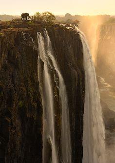 Brave Elephant, Victoria Falls, Zambia >>> What a photo!