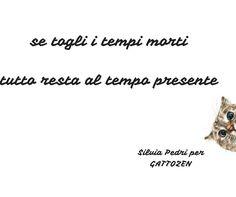#gatto #zen #saggio #crescitapersonale #spiritualità #love #amore #felicità #happy #life #vita #feelsafe #testesso  #libertà #successo #creatività #gattozen #presente
