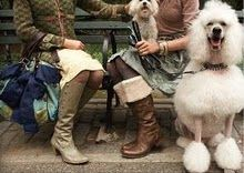 mm mm mmm the boots, the color, the DOG!