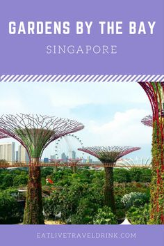 Views of Gardens by the Bay in Singapore