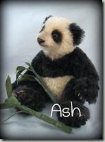 Ash tag