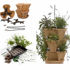 Garden Stacker Planter + Indoor Herbal Tea Herb Garden Kit - Grow Lavender, Lemon Grass, Marigold, More: Seeds, Peat Pellets, Tray, Tuscany Color Stackable Planter: Just Stack & Grow
