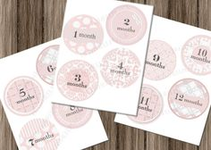 Monthly Onesie Stickers Baby Girl  DIY printable by PinwheelPlace, $5.00