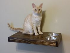 CAT SHELF Feeding / Dining / Lounging Shelf, Cat Furniture, Pet Feeding, Feeder, Cat Perch, Cat Shelving, Pet Food, Cat Lounge by DawsonCreativeCustom on Etsy https://www.etsy.com/listing/483991369/cat-shelf-feeding-dining-lounging-shelf