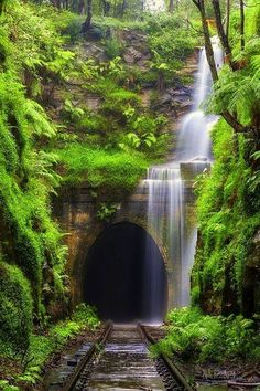 Waterfall over abandoned train tracks - Nature Reclaimed #BeautifulNature…