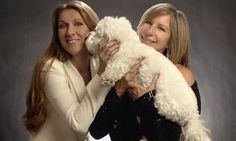 Barbra has gushed about Sammie's playful nature in the past, sharing an Instagram snap last year of the dog snuggling up to Celine Dion   Read more: http://www.dailymail.co.uk/tvshowbiz/article-3064130/Flight-attendant-needs-stitches-Barbra-Streisand-s-pet-dog-Sammie-attacks-private-plane-trip.html#ixzz4R8VQBmmP  Follow us: @MailOnline on Twitter   DailyMail on Facebook