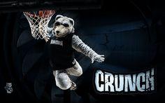 Minnesota Timberwolves Mascot Crunch!   Minnesota Timberwolves