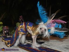 Mayan Princess - Halloween Costume Contest via @costumeworks