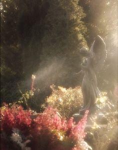 Super Garden Fairy Aesthetic Ideas garden is part of Nature aesthetic - Angel Aesthetic, Nature Aesthetic, Aesthetic Fashion, Aesthetic Green, Aesthetic Design, Aesthetic Vintage, Aesthetic Photo, Photowall Ideas, Magic Garden