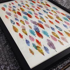Detalhes do quadro Feathers  by parederia