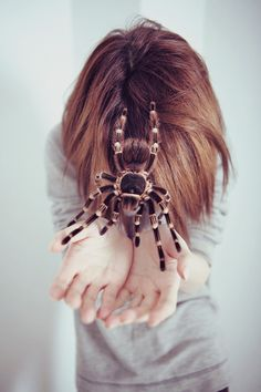 tarantula- on katies head......