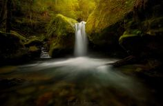 Chasm Falls, Meander Valley, Tasmania. LINCOLN HARRISON PHOTOGRAPHY.
