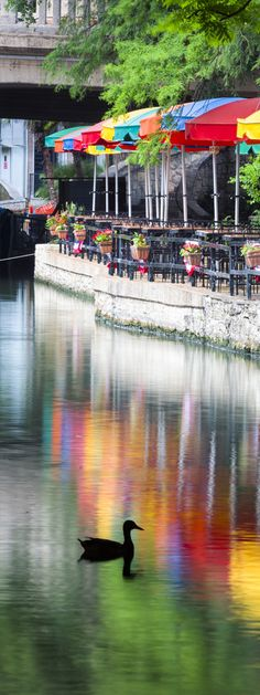 San Antonio Riverwalk - don't forget to dine at one of the fabulous Riverwalk restaurants. Lots of music and great views!
