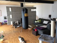 Ungemütliches Wohnzimmer vor Umgestaltung Modern, Conference Room, Furniture, Home Decor, Environment, Cozy Living, Cosy House, Detached House, Steel