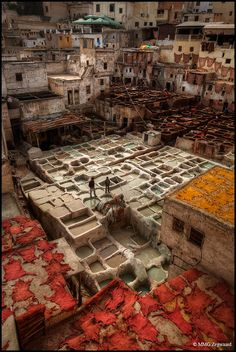 Fes Tannery, Morocco by Martino ~ NL, via Flickr