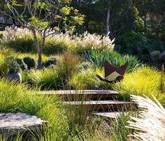 Image result for native austin texas woodland garden