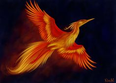 My second picture for project: Firebird. I intended to try to draw phoenix some time anyway, so I welcamed this chance. It took me about 4 hours and I really enjoyed drawing this