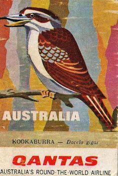 Qantas Airline - Australia.  kookaburra  Repinned by http://sailorstales.wordpress.com/