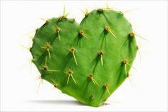 Mexico Lindo y querido-un nopalito amoroso