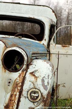 Rustic broken down beauty