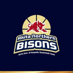 J-wonderさんの提案 - バスケットボールチーム 『Akita Northern BISONS』のロゴ   クラウドソーシング「ランサーズ」