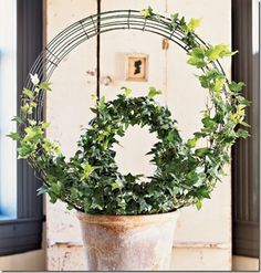 How To Train and Maintain an Indoor Ivy Topiary Topiary Plants, Topiary Garden, Garden Art, Garden Plants, House Plants, Garden Design, Topiaries, Indoor Ivy, Indoor Plants