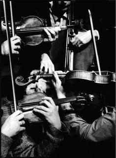 Quatuor Danel http://www.quatuordanel.eu/ this picture is just georgeous