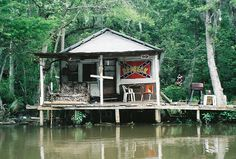 Louisiana  Swamps   cajun culture