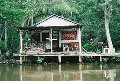 Louisiana  Swamps   cajun culture