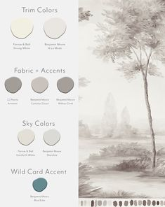 Here are our favorite paint colors to go with our Pastoral Pebble mural wallpaper! Blue Gray Paint Colors, Paint Color Combos, Paint Color Palettes, Paint Colours, Color Schemes, Benjamin Moore Shoreline, Benjamin Moore Balboa Mist, Rose Wallpaper, Wallpaper Murals