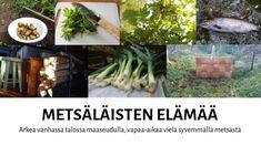 Metsäläisten elämää: Neulottu kauluri Asparagus, Vegetables, Plants, Studs, Vegetable Recipes, Plant, Veggies, Planets