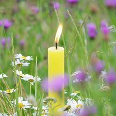 balthasarkerzen Pillar Candles, Photo And Video, Spring, Inspiration, Instagram, Summer, Biblical Inspiration, Summer Time, Inspirational