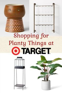 Shopping at Target for Planty Things - Carmen Whitehead Large Plants, Faux Plants, Ficus Elastica, Head Planters, Mixed Media Tutorials, Wood Stool, Balcony Garden, Low Lights, Home Decor Accessories