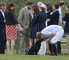Prince Harry found time between polo matches to play with Lupo during the annual Audi Polo Challenge at Coworth Park, Ascot, Berkshire