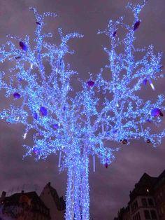 Christmas Markets  - Strasbourg France
