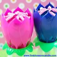Cotton Candy - 1 Pink & 1 Blue Fire Blossom  www.fireblossomcandle.com  A unique cake candle for your birthday party